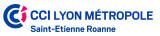 Chambre de Commerce et d'Industrie de Lyon